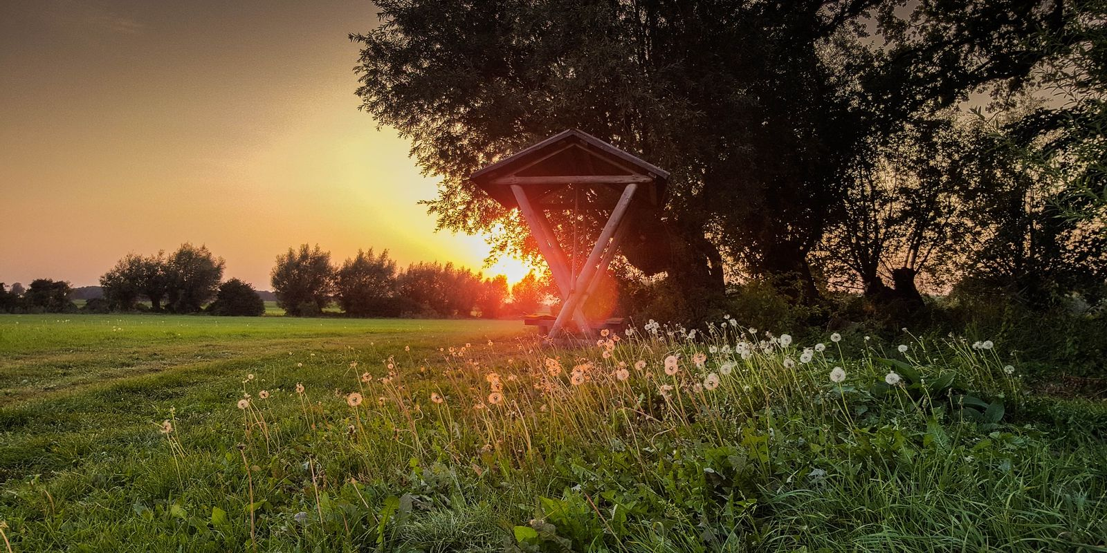 zomermorning