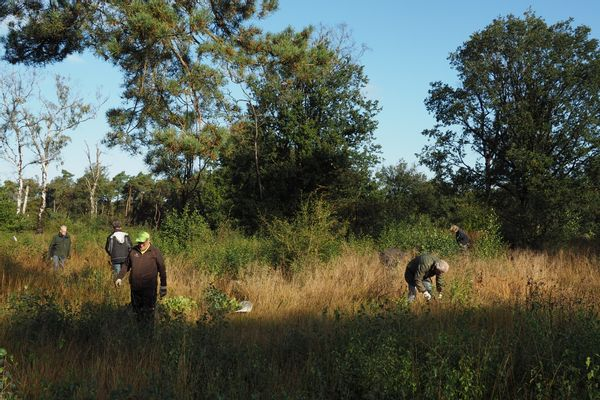 opslag verwijderen Boetelerveld