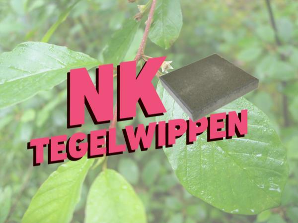 NK Tegelwippen in Zwolle