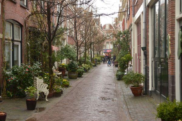 De 'ideale' groene straat