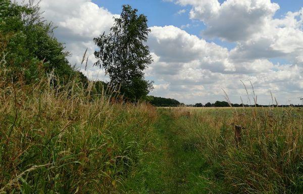 Tussen Deurningerbeek en Deurninger Es