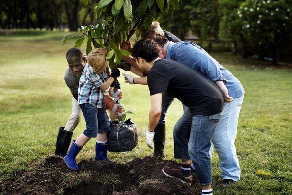 Bomen planten een plezier voor veel generaties!
