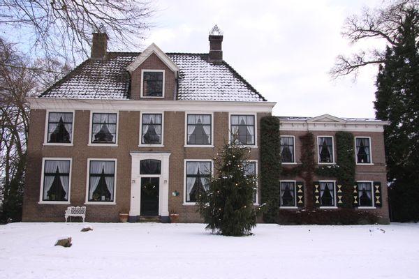 EnHOe helpt kerstbomen de wereld uit