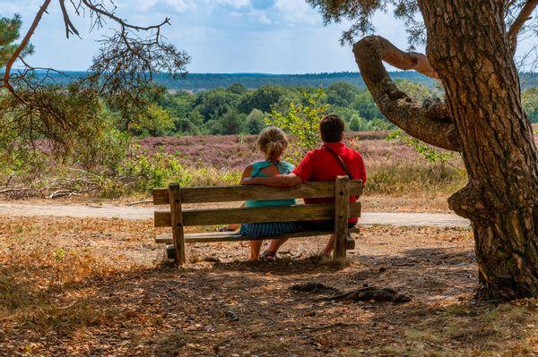 Gezocht: vrijwilligers beleefbaar maken landschapsbiografie