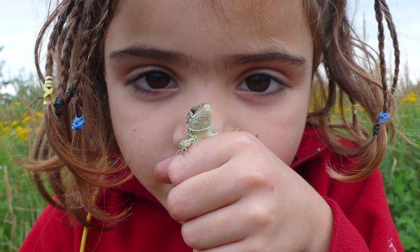 Gezocht: nieuwe vrijwilliger kinderactiviteiten Bezoekerscentrum Hof Espelo (Enschede)
