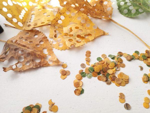 Hoe makkelijk is het: gaatjes met perforator in bladeren