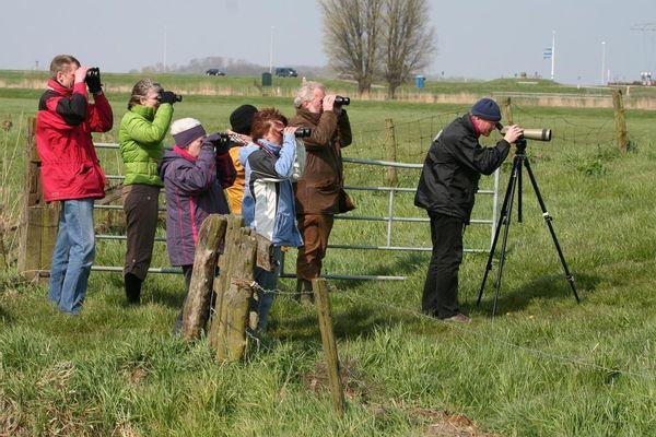 Op zoek naar boerenlandvogels