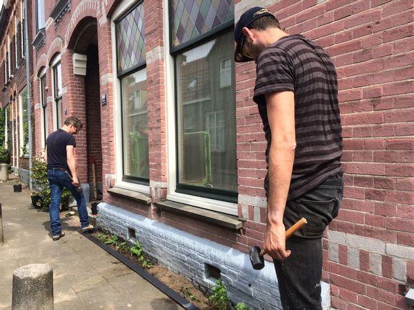 Inspiratie: geveltuintjes, zoals hier aangelegd in 2018 in Assendorp