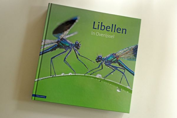 Boek, Libellen in Overijssel