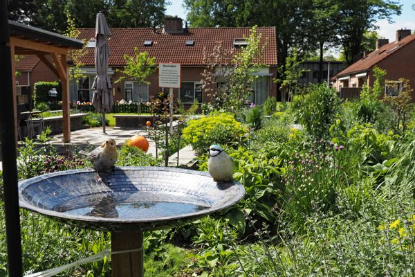 De binnentuin van het zorgcentrum ZGR Swaenewoerd.